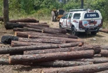 Onze pessoas são presas por desmatamento de área ambiental em Camaçari | Divulgação | SSP-BA