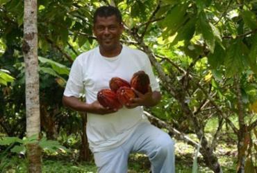 Arataca recebe nova produção cacaueira em áreas de reforma agrária | Divulgação