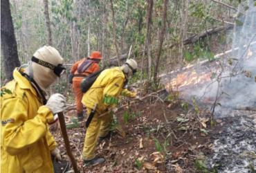 Incêndio florestal em Utinga está controlado