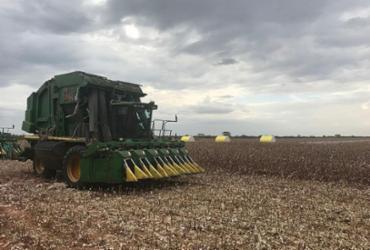 Correntina recebe projeto para viabilizar o Agronegócio nas propriedades rurais