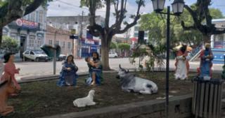 Polícia segue investigando roubo de decoração natalina na cidade de Serrinha - Reprodução