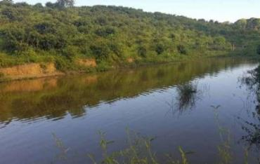 Crianças pularam no rio sem autorização da tia - Foto: Reprodução
