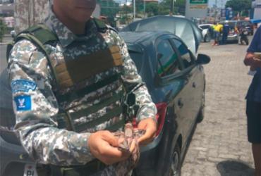 Jiboia é resgatada em concessionária de Salvador | Divulgação | Guarda Municipal