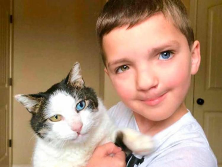 O pequeno Madden e o gatinho Moon são amigos inseparáveis - Foto: Facebook | @christinavhumphreys