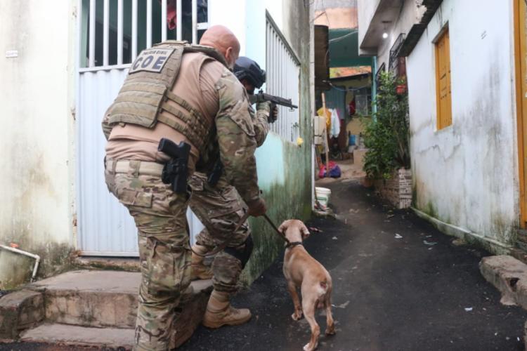 Policiais civis e militares, com a ajuda de cães farejadores, participam da ação - Foto: Alberto Maraux   SSP   Divulgação