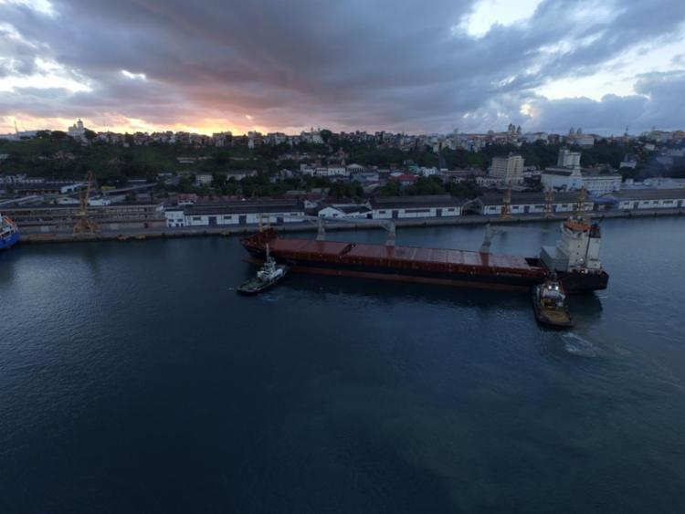 A carga chegou na manhã desta quinta-feira, 20, por meio do Navio Viroria Bay - Foto: Divulgação
