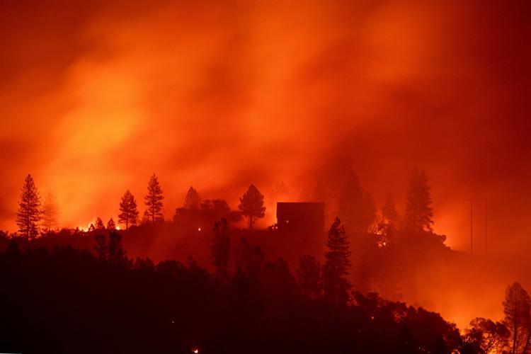 Foram 88 morte e 249 desaparecimentos durante o incêndio que destruiu cerca de 62 mil hectares