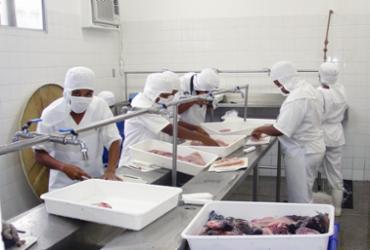 Terminal Pesqueiro em Sobradinho tem aumento de 10% da sua produção