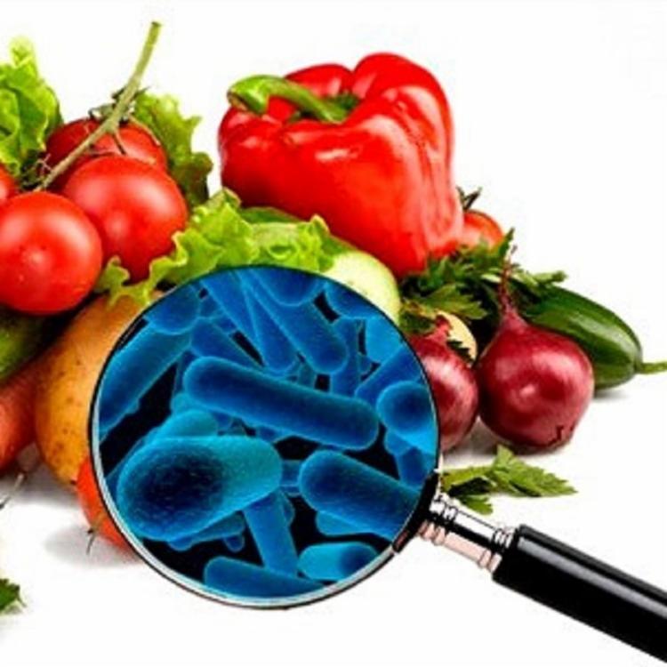O público alvo será os nutricionistas, engenheiros de alimentos, gastrônomos e gestores de A&B portadores de diploma de graduação - Foto: Divulgação