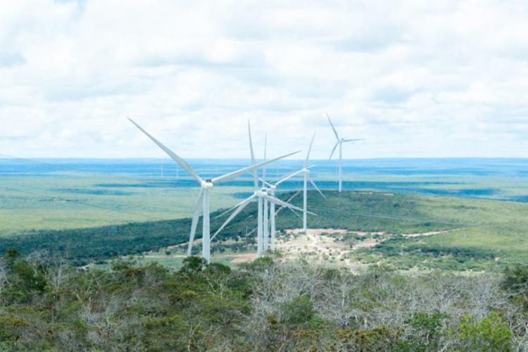 Os oito parques eólicos em operação comercial em Morro do Chapéu têm capacidade instalada de 231.8 megawatts - Foto: Divulgação