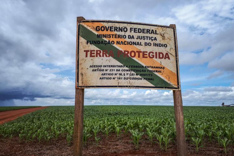 Atualmente, atividade agrícola em terras indígenas é ilegal - Foto: Lidiane Ribeiro   Ibama
