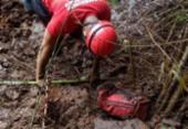 Bombeiros localizam mais dois corpos em Brumadinho | Foto: Divulgação | Corpo de Bombeiros de Minas Gerais