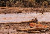 Agência Nacional quer proibir uso de barragens de mineração a montante | Foto: Divulgação