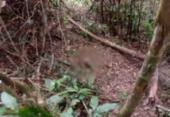 Corpo de adolescente é encontrado enterrado em matagal | Foto: Divulgação | RADAR 64