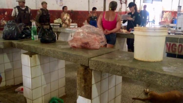 Foram apreendidas e incineradas cerca de 650 quilos de carne no Mercadão de Serrinha - Foto: Divulgação