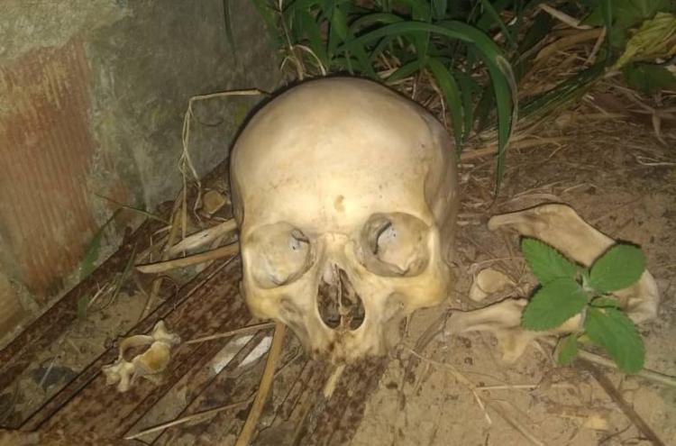 Bombeiros encontraram crânio após denúncia anônima - Foto: Reprodução   Simões Filho Online