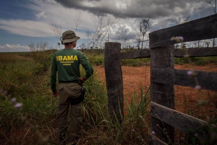 Ibama aplica cerca de 8 mil multas por ano, somando cerca de R$ 4 bilhões anuais - Foto: Divulgação