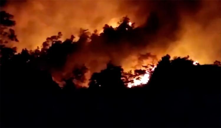 Incêndio atingiu grande parte da vegetação e fazenda locais - Foto: Reprodução | TV Bahia