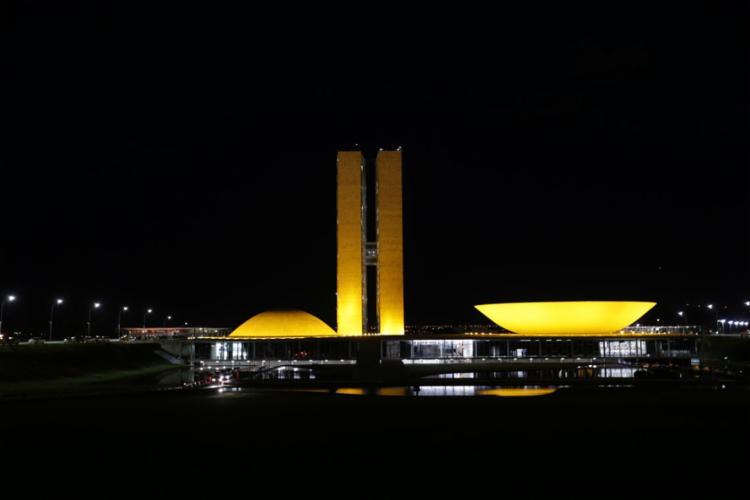 No Senado, há 15 comissões permanentes - Foto: Fabio Rodrigues Pozzebom | Agência Brasil | 02.05.2018