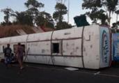 Ônibus colide com cavalo na BR-330 e seis ficam feridos | Reprodução | Ilhéus 24h