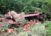 Caminhão cai em ribanceira e deixa um ferido na BA-148   97NEWS   Reprodução
