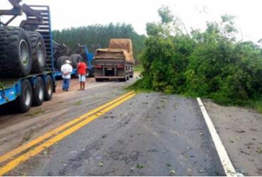 PRF alerta aos motoristas que trafegam nas estradas do Sul do estado | Divulgação | PRF