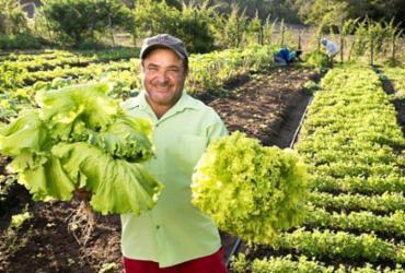 Feira da Agricultura Familiar de Mata de São João começa nesta sexta-feira (23)
