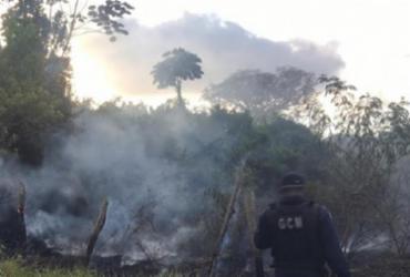 Homem morre carbonizado ao tentar conter incêndio em Amargosa | Reprodução | Criativa Online
