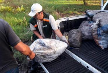 Mais de 5 toneladas de crustáceos são apreendidos em Salinas das Margaridas | Divulgação | SSP-BA