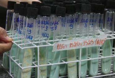Tuberculose mata 4.500 pessoas todos os dias no mundo   Maicon Lemes Costa   Secom   RO
