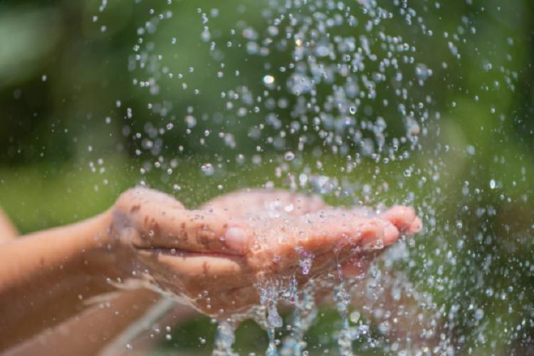 A ferramenta foi criada com intuito de diminuir a poluição das águas por produtos com substâncias prejudiciais à natureza. - Foto: Divulgação   Freepik