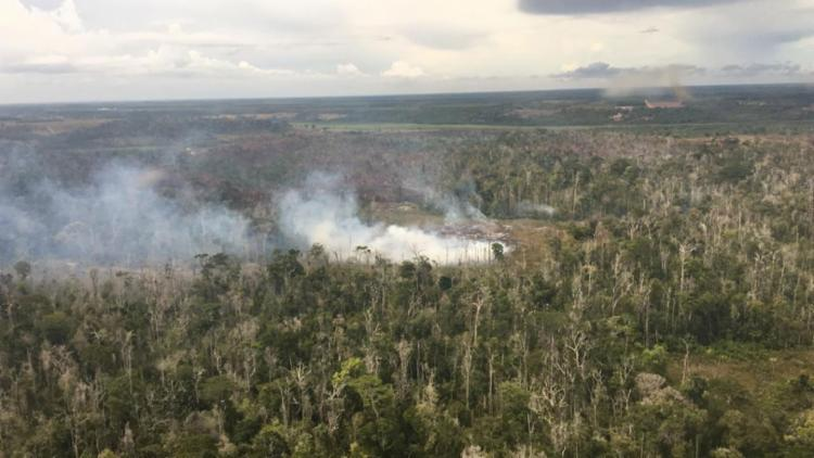 Fogo se alastrou pelo parque Nacional na sexta-feira, 1º - Foto: Divulgação | ICMBio