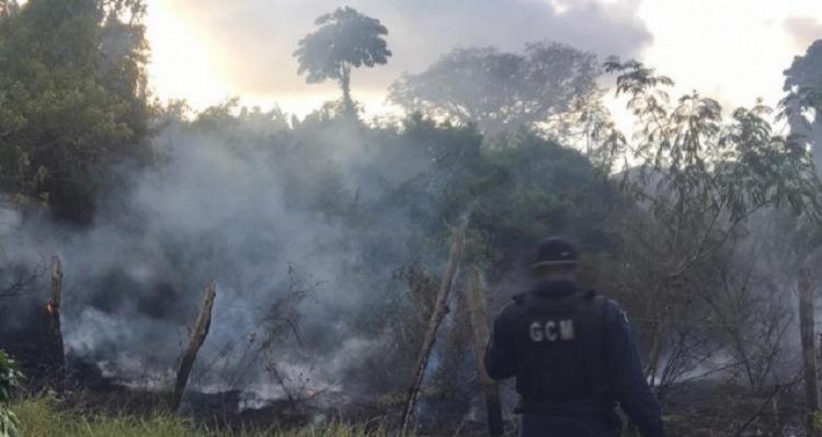 O homem teria iniciado o incêndio na vegetação, situada na sua propriedade, quando as chamas se espalharam - Foto: Reprodução   Criativa Online