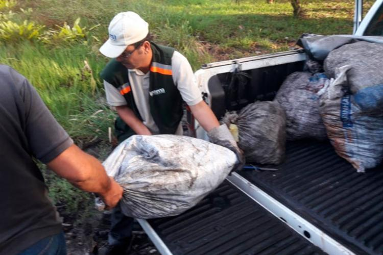 Animais seriam vendidos ilegalmente nos bares e restaurantes da região - Foto: Divulgação | SSP-BA