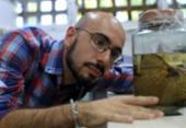 Pesquisadores avaliam o risco da extinção de sapos na Bahia | Foto: Adilton Venegeroles / Ag. A Tarde