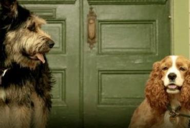Disney divulga a primeira imagem do remake de 'A Dama e o Vagabundo' | Reprodução | Disney