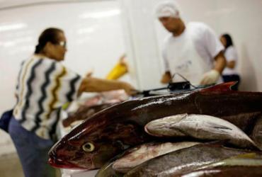 Confira pescados que você pode comer sem culpa ambiental | Raphael Müller | Ag. A TARDE