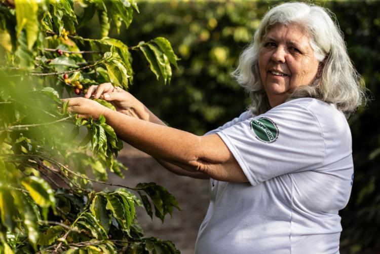 Foram investidos R$3,2 milhões na cadeia produtiva do café, possibilitando agregar valor à produção e alavancar a comercialização do produto - Foto: Divulgação