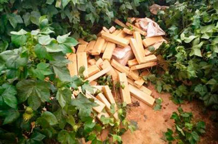 Os PMs encontraram a droga escondida em um matagal - Foto: Divulgação | SSP