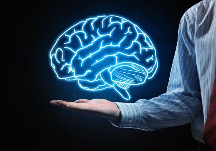Cérebro pode se adaptar para curar doenças como Parkinson - Foto: Reprodução   Freepik