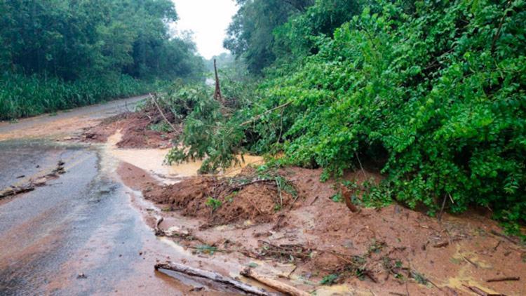 Quedas de árvores e deslizamento de terra em trecho da BR-324