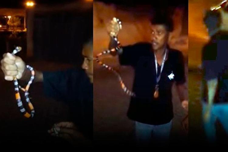 Vítima encontrou a cobra na rua - Foto: Divulgaçã | Blog do Anderson