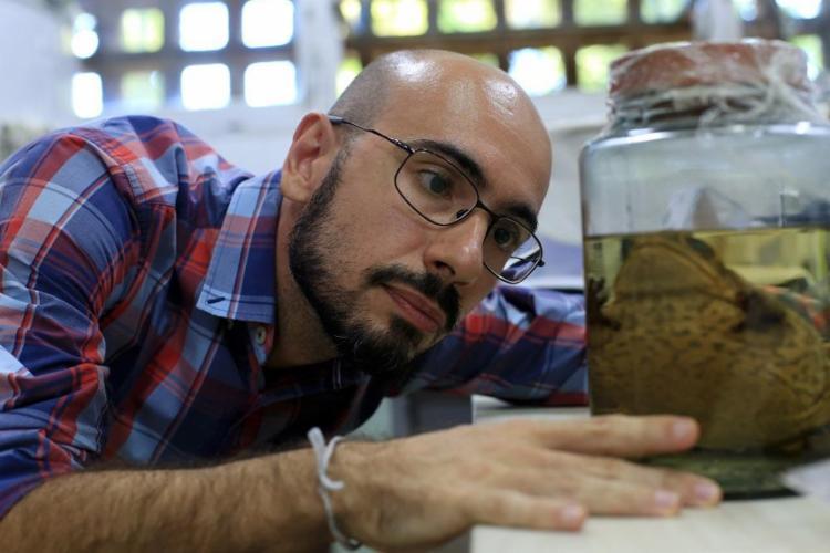 Lucas Forti pesquisa a extinção de anfíbios causada pelo fungo quitrídio, que ataca 501 espécies em todo o mundo - Foto: Adilton Venegeroles / Ag. A Tarde