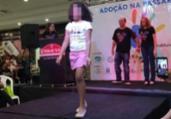 'Passarela de adoção' causa polêmica em Cuiabá | Divulgação
