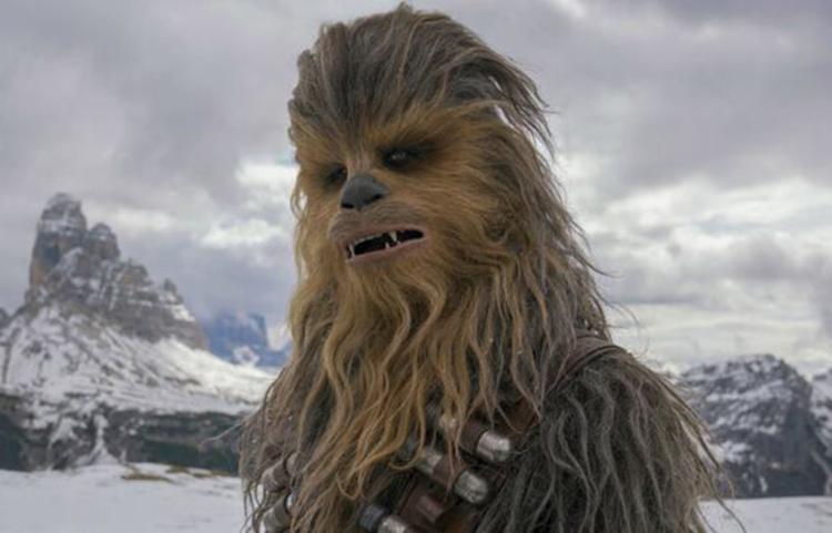 Intérprete de Chewbacca em cinco dos oito filmes da saga, Peter Mayhew morreu aos 74 anos - Foto: Divulgação