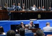 Senado rejeita decretos do porte de armas de Bolsonaro | Marcos Oliveira | Agência Senado