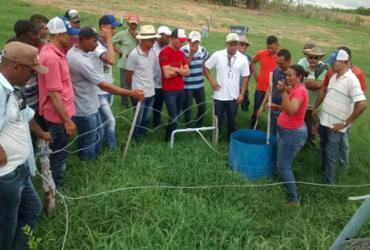 Agricultores familiares comemoram resultados da prestação de serviço de assistência técnica