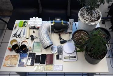Trio suspeito de tráfico de drogas sintéticas é preso em Stella Maris | Divulgação | SSP
