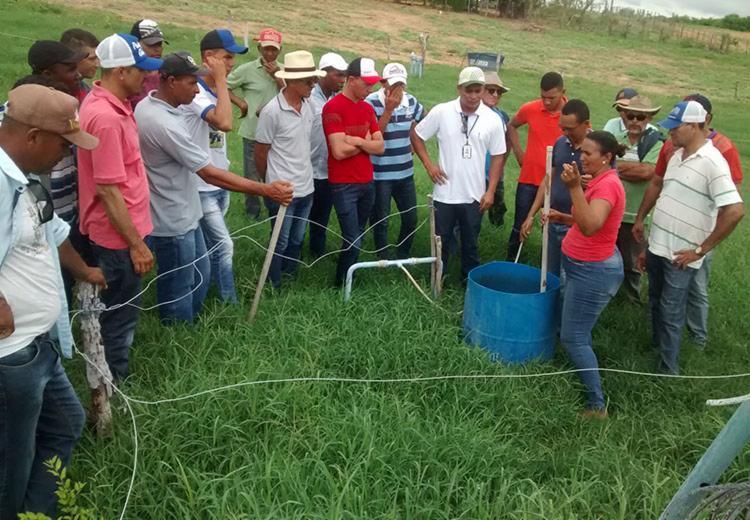 Parceria fortalece o meio rural do Território Velho Chico - Foto: Divulgação