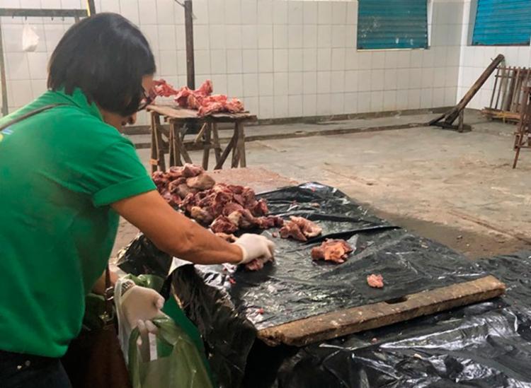 Material foi encontrado em um Centro de Abastecimento de Jacobina e em uma feira livre - Foto: Divulgação   MP-BA